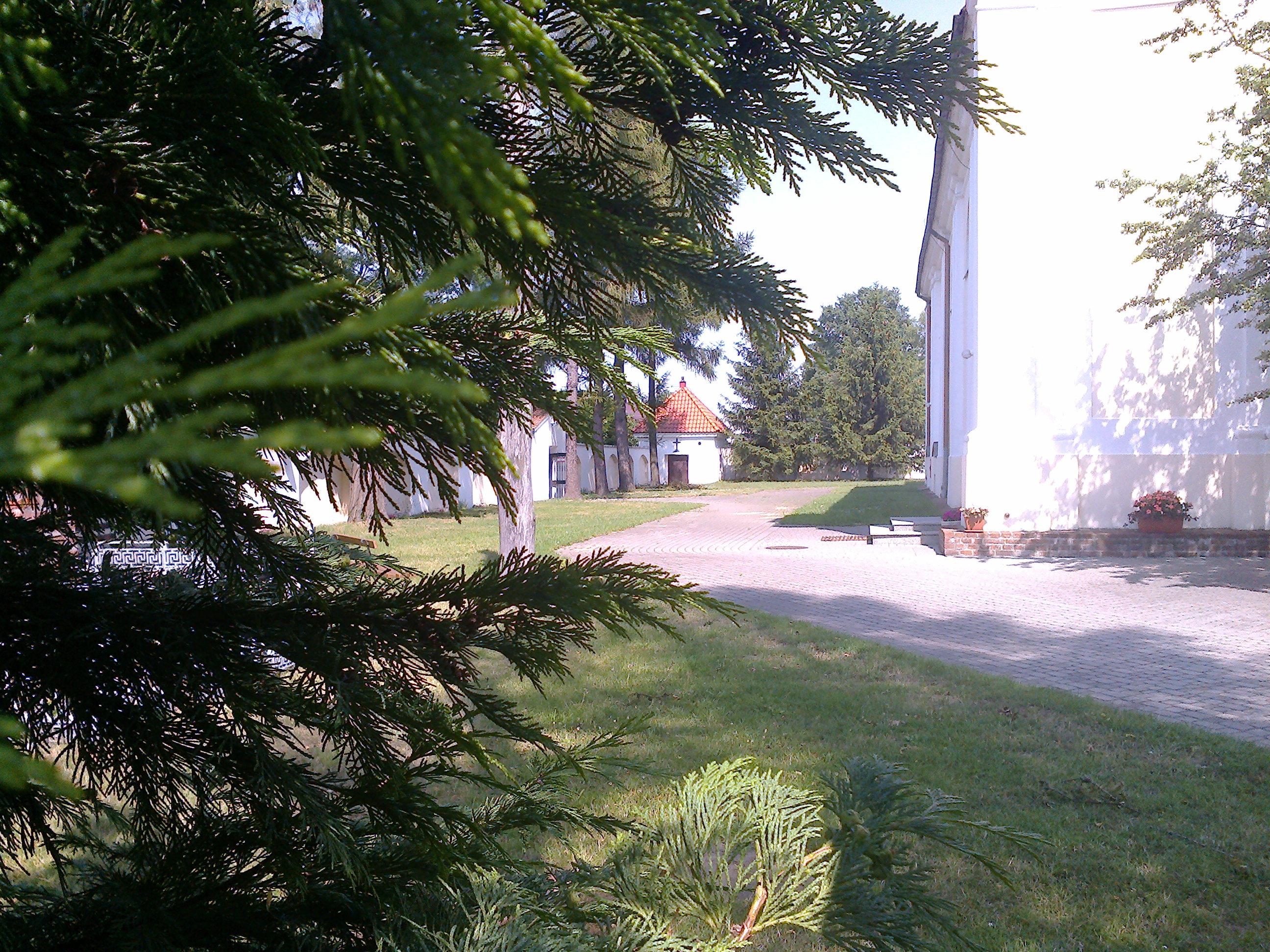Cmentarz przykościelny - strona północna