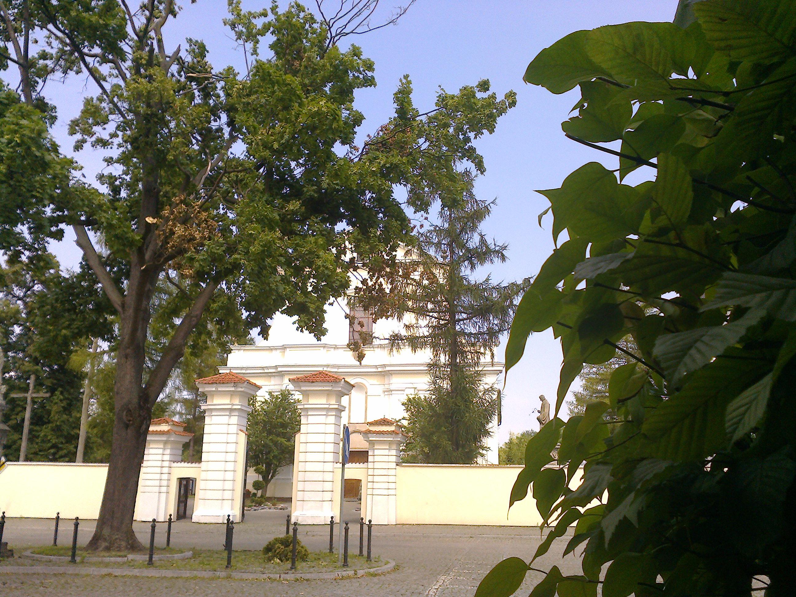 Kościół - widok z ogrodów plebanii
